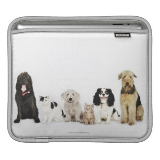Portrait of cats and dogs sitting together iPad sleeve