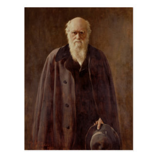 Portrait of Charles Darwin  1883 Postcard