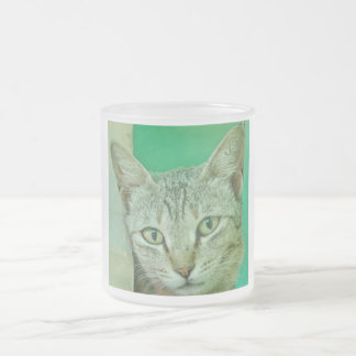 Portrait of domestic cat frosted glass mug
