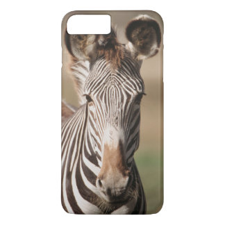 Portrait of Grevy's Zebra iPhone 7 Plus Case