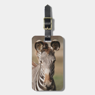 Portrait of Grevy's Zebra Luggage Tag