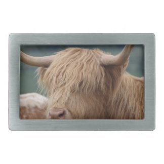 portrait of Highland Cattle Rectangular Belt Buckles