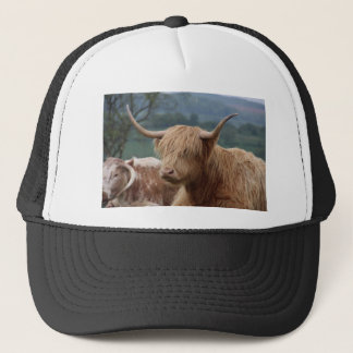 portrait of Highland Cattle Trucker Hat