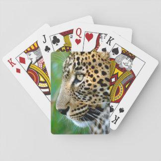 Portrait Of Leopard (Panthera Pardus) Playing Cards