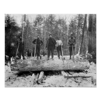 Portrait of Loggers, 1890. Vintage Photo Poster