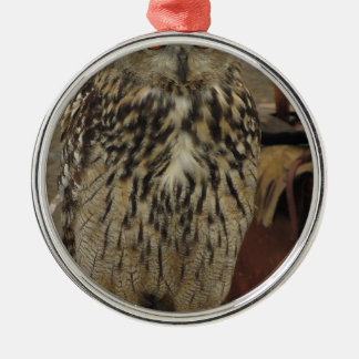 Portrait of long-eared owl . Asio otus, Strigidae Silver-Colored Round Decoration