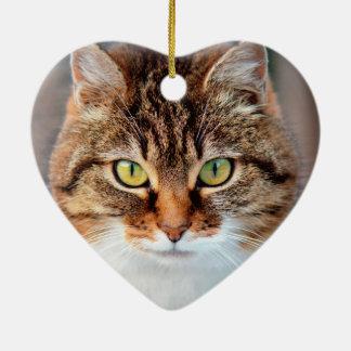 Portrait of Manx Cat Green-Eyed Ceramic Ornament