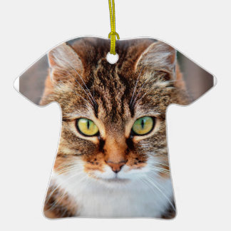 Portrait of Manx Cat Green-Eyed Double-Sided T-Shirt Ceramic Christmas Ornament