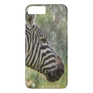 Portrait Of Plains Zebra (Equus Quagga) Standing iPhone 7 Plus Case