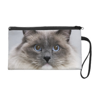 Portrait of Ragdoll cat Wristlet Purses