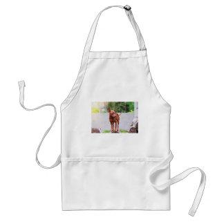 Portrait of red miniature pinscher dog standard apron