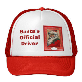 Portrait of Santa Cap