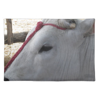 Portrait of the Chianina, italian breed of cattle Placemat