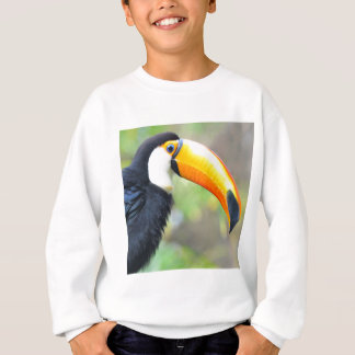 Portrait of toco toucan sweatshirt