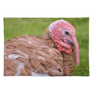 Portrait of turkey placemat