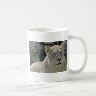 Portrait of white lioness mugs
