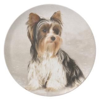 Portrait Yorkie Miss Mia Photo painting Plate