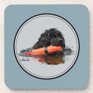 Portuguese Water Dog with Orange Bumper Coaster