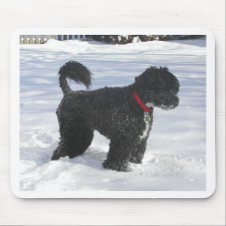 Portugueuse_Water_Dog_full Mouse Pad