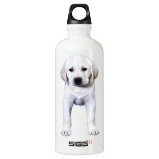 Posed Yellow Labrador Puppy Water Bottle