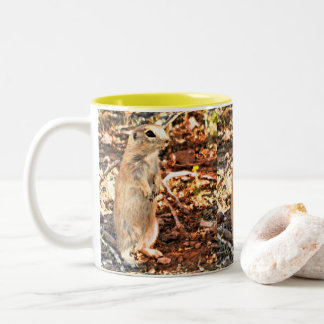 Posing Ground Squirrel Coffee Mug