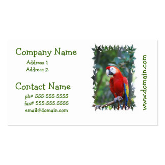 Posing Parrot Business Cards