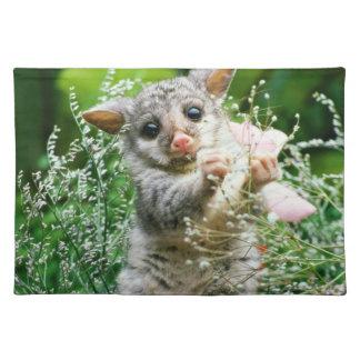 Possum Placemat