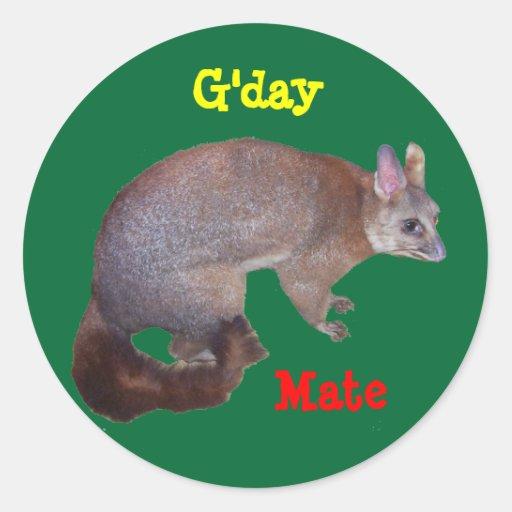 Possum Round Stickers