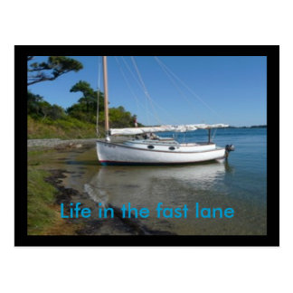 Post card:Life in the fast lane Postcard