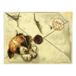 Post Card With Vintage Scrap Book Puppy