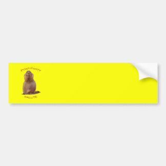 Post-Party Salute Bumper Sticker