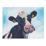 Postcard - 0254 Irish Friesian Cow