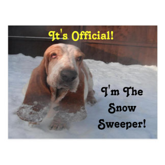 Postcard Basset Hound Snow Sweeper