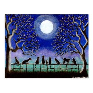 Postcard,Black,cats,landscape,everyday,Halloween Postcard
