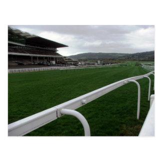 Postcard - Cheltenham Racecourse