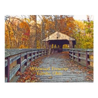 "postcard, ""Covered Bridge at Wildwood Preserve"" Postcard"