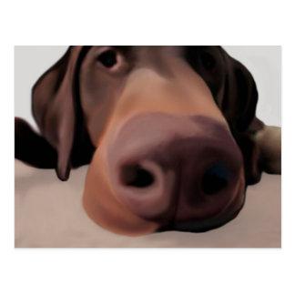 Postcard Dog Big Nose Painted