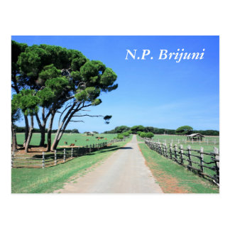 postcard for National park Brioni, Croatia