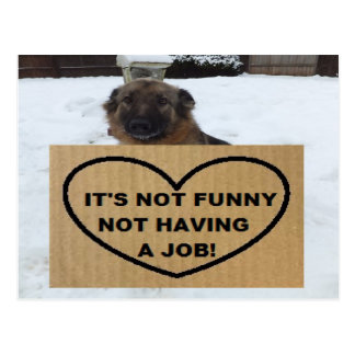 Postcard German Shepherd It's Not Funny No Job