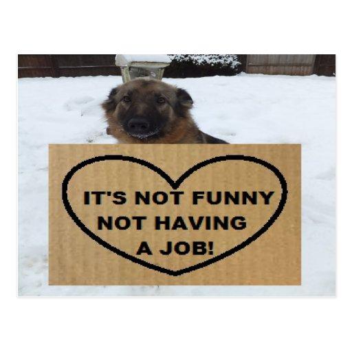 Postcard German Shepherd It's Not Funny No Job