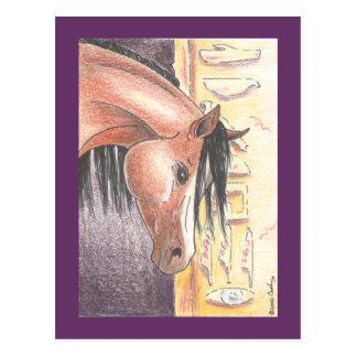 "Postcard ""Ibn Denah"""