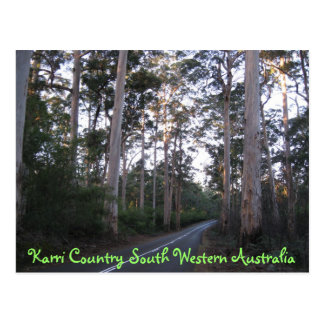 POSTCARD - Karri Country South Western Australia