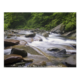 Postcard - Little Pigeon River, Great Smoky Mtns.