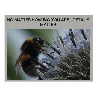 POSTCARD MACRO BEE, DETAILS MATTER