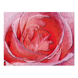 Postcard - Materialized red rose