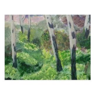 Postcard of a Devon Primrose Wood.