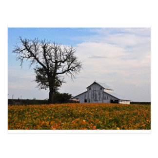 Postcard, old barn postcard