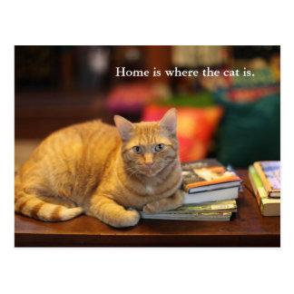 Postcard Orange Cat