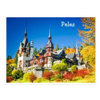 Postcard  Peles, Sinaia