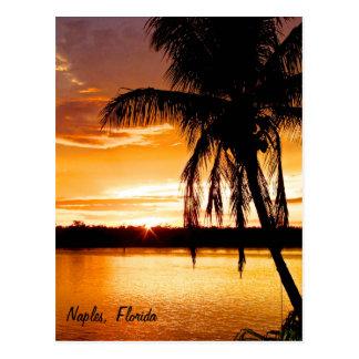 Postcard Silhouette Palm Tree, Orange Sunset Sky
